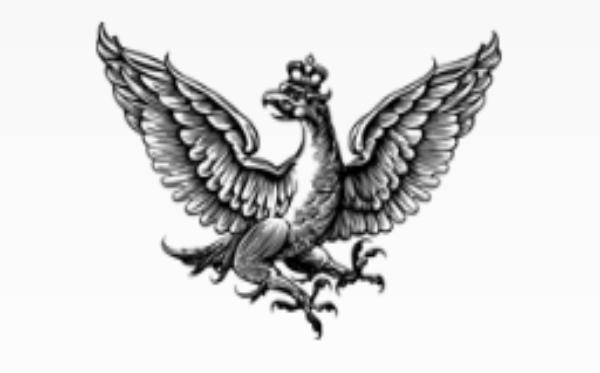 Rzeczpospolita: #PosiłekDlaLekarza online fundraising